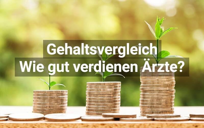 Wie gut verdienen Ärzte in Österreich?