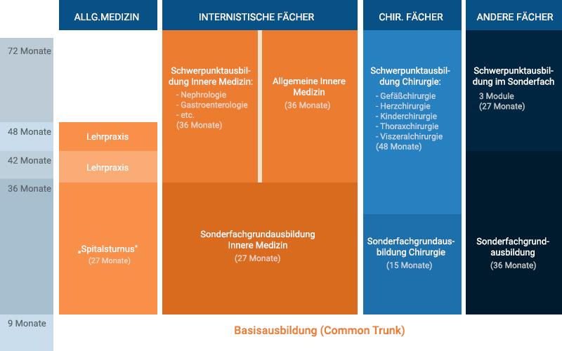 Facharztausbildung Österreich Aufbau