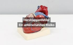 Herzklappenfehler Risiko Österreich