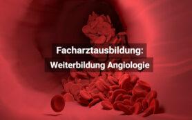 Facharztausbildung Angiologie