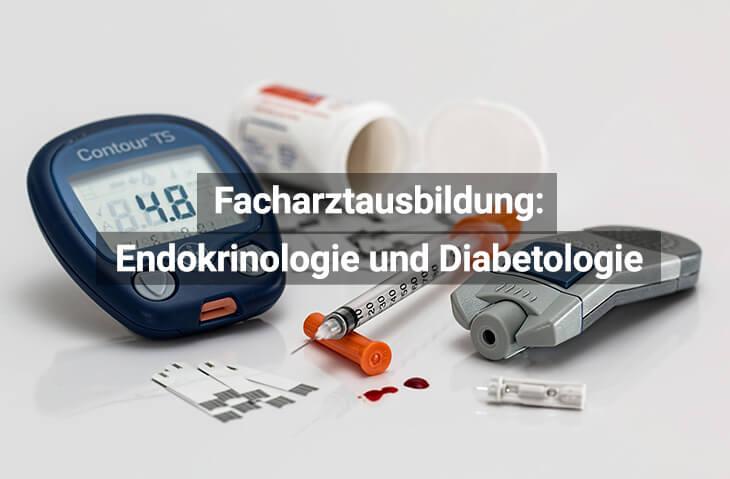 Facharztausbildung Innere Medizin, Endokrinologie Und Diabetologie