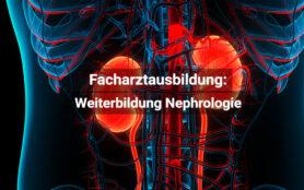 Facharztausbildung Nephrologie